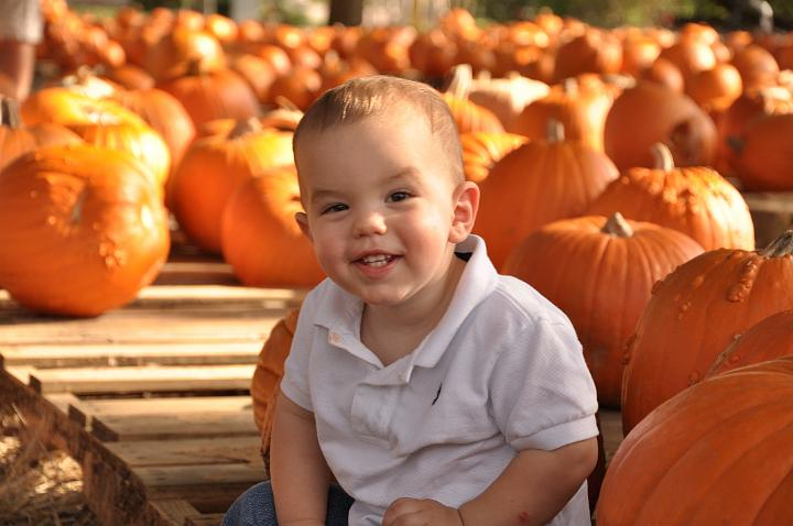 Jackson in the Pumpkin Patch