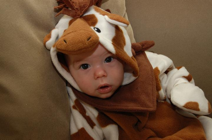 Jackson,the Giraffe @ 3 Months Old