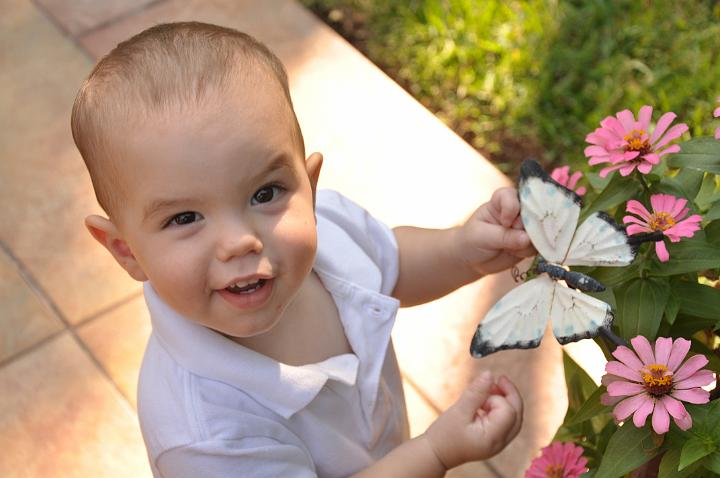 JD holding Butterfly