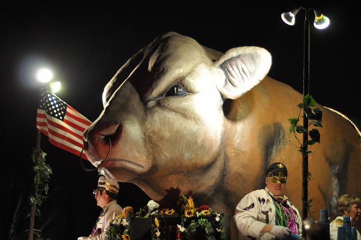 Cow Float